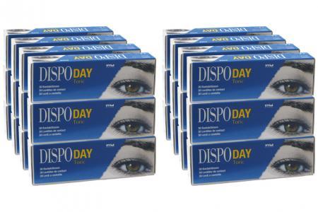 Dispo Day Toric, Sparpaket 12 Monate 2x360 Stück
