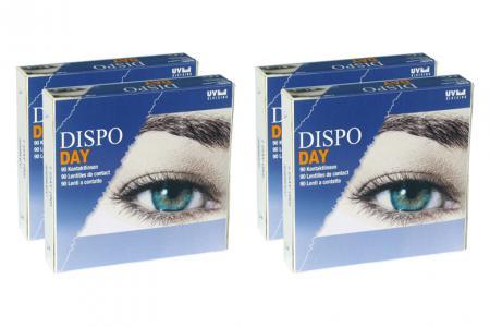 Dispo Day, Sparpaket 6 Monate 2x180 Stück